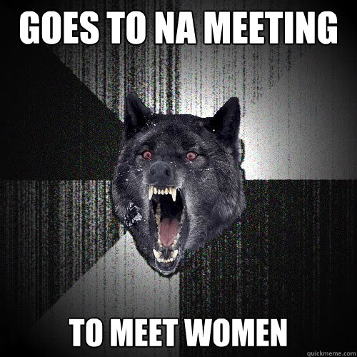 Goes to NA meeting to meet women - Goes to NA meeting to meet women  insanitywolf