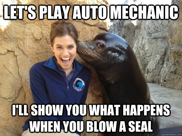 Let's play auto mechanic I'll show you what happens when you blow a seal