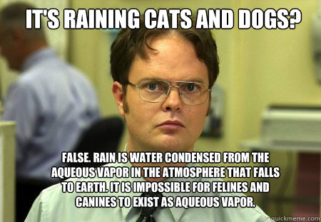 It's raining cats and dogs? False. Rain is water condensed from the aqueous vapor in the atmosphere that falls to earth. It is impossible for felines and canines to exist as aqueous vapor. - It's raining cats and dogs? False. Rain is water condensed from the aqueous vapor in the atmosphere that falls to earth. It is impossible for felines and canines to exist as aqueous vapor.  Schrute