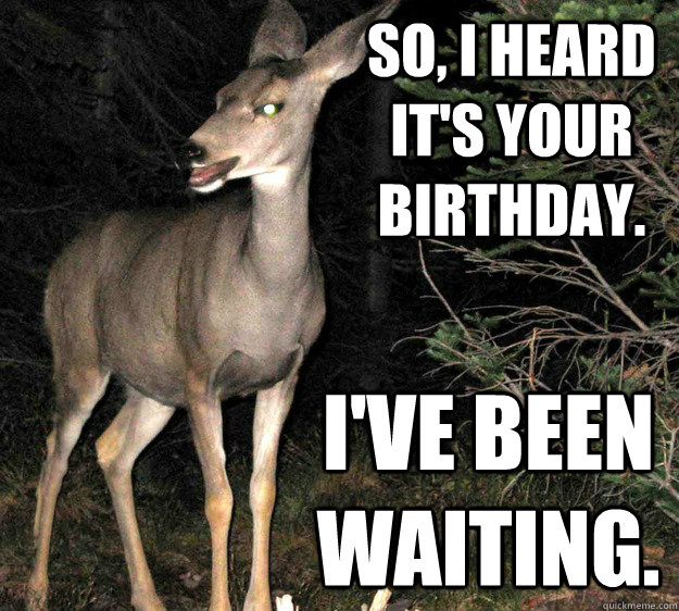 So, I heard it's your birthday. I've been waiting. - So, I heard it's your birthday. I've been waiting.  Vaguely Creepy Deer.