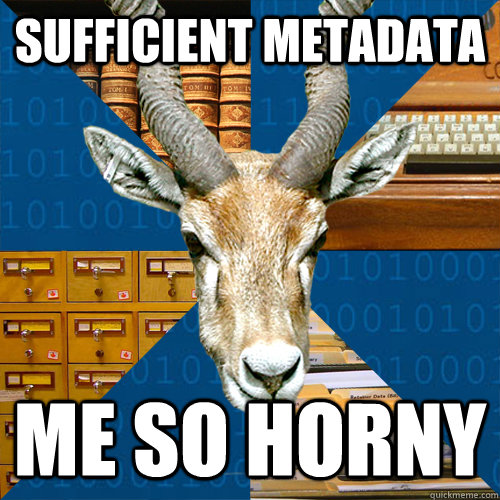 sufficient metadata me so horny