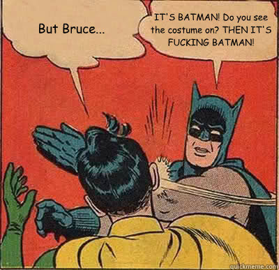 But Bruce... IT'S BATMAN! Do you see the costume on? THEN IT'S FUCKING BATMAN! - But Bruce... IT'S BATMAN! Do you see the costume on? THEN IT'S FUCKING BATMAN!  Batman Slapping Robin