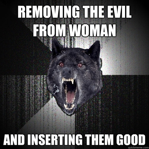 removing the evil from woman and inserting them good - removing the evil from woman and inserting them good  Insanity Wolf