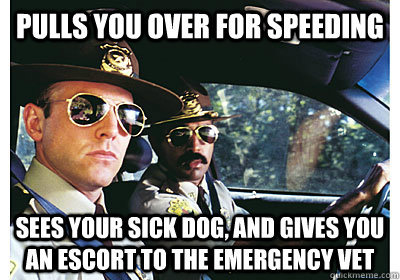 Pulls you over for Speeding sees your sick dog, and gives you an escort to the Emergency vet
