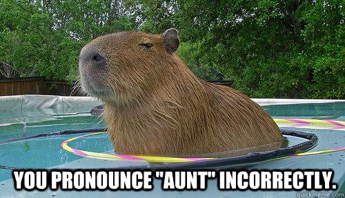 You pronounce
