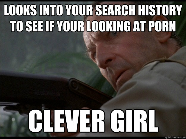 looks into your search history to see if your looking at porn clever girl