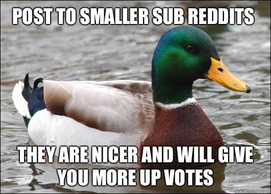 Post to smaller sub reddits  They are nicer and will give you more up votes  - Post to smaller sub reddits  They are nicer and will give you more up votes   Actual Advice Mallard