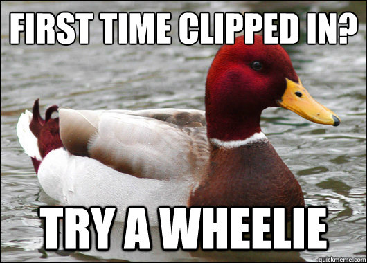 first time clipped in?  try a wheelie - first time clipped in?  try a wheelie  Malicious Advice Mallard