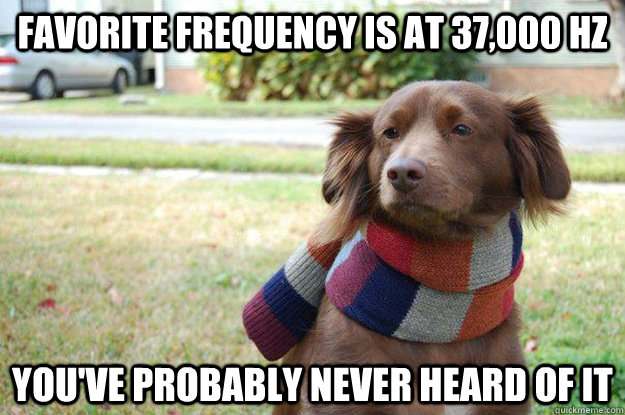 Favorite frequency is at 37,000 hz You've probably never heard of it - Favorite frequency is at 37,000 hz You've probably never heard of it  Misc