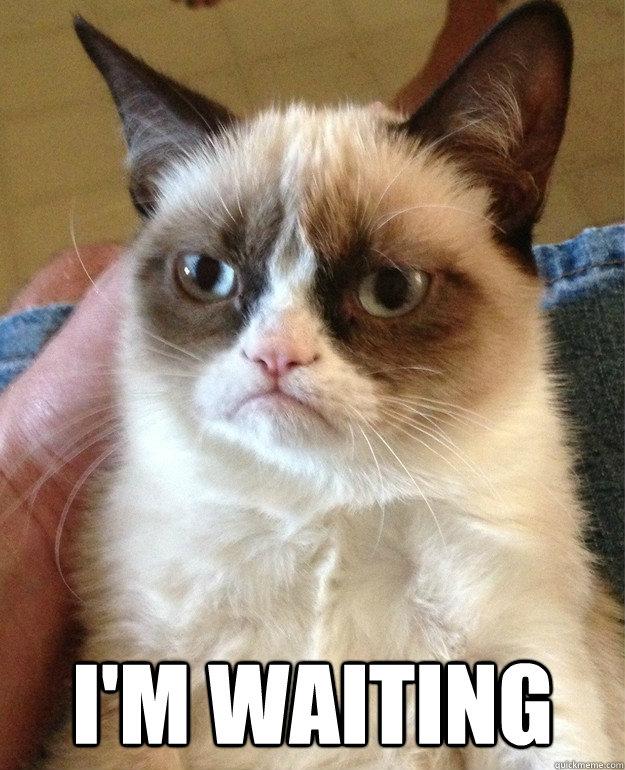 I'm waiting -  I'm waiting  Misc
