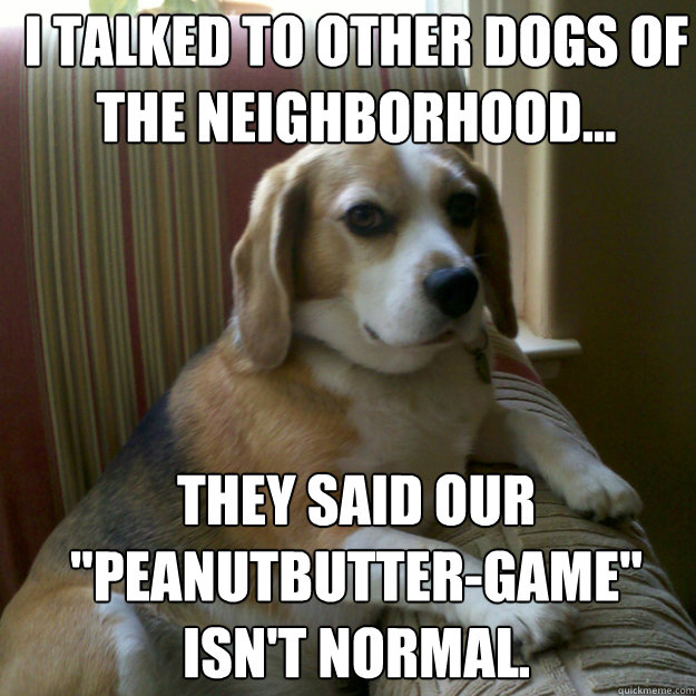 i talked to other dogs of the neighborhood... they said our