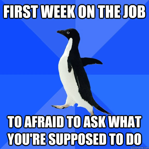 First week on the job To afraid to ask what you're supposed to do - First week on the job To afraid to ask what you're supposed to do  Socially Awkward Penguin