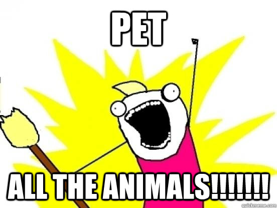 PET ALL THE ANIMALS!!!!!!!