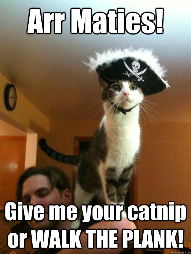 Arr Maties! Give me your catnip or WALK THE PLANK!