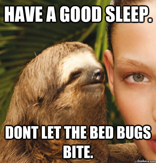 You dating a bed bug meme