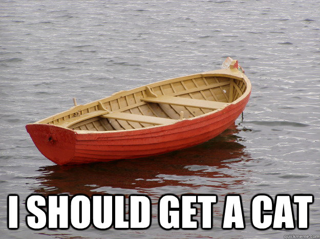 I should get a cat - I should get a cat  Lonely Boat