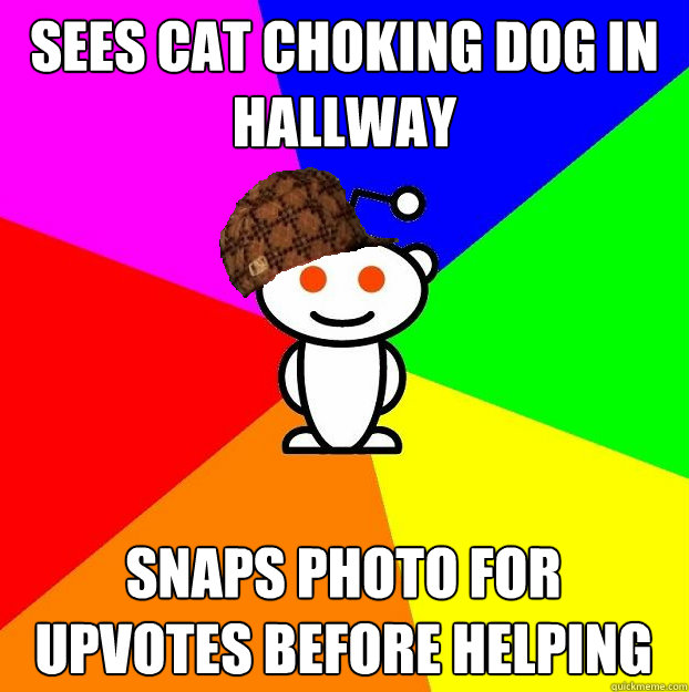 Sees cat choking dog in hallway Snaps photo for upvotes before helping - Sees cat choking dog in hallway Snaps photo for upvotes before helping  Scumbag Redditor