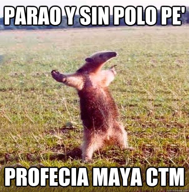 parao y sin polo pe' profecia maya ctm