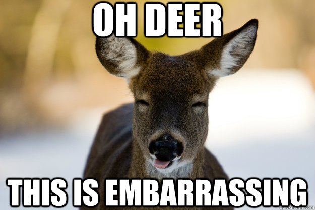 Oh Deer This Is Embarrassing Embarrassed Deer Quickmeme