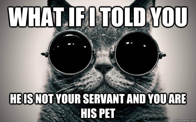 what if I told you he is not your servant and you are his pet  Morpheus Cat Facts