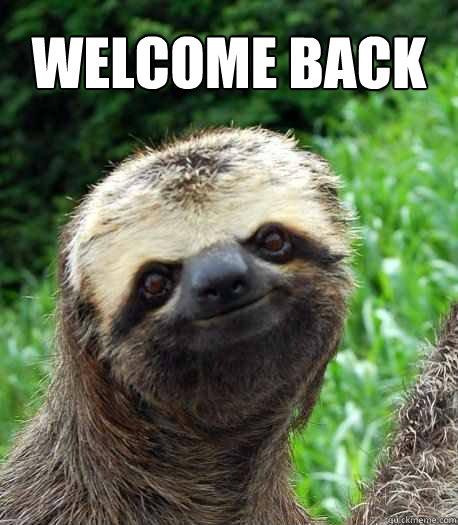 WELCOME BACK - WELCOME BACK  Sloth welcome back