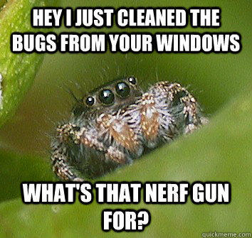Hey I just cleaned the bugs from your windows What's that nerf gun for?