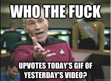 Who the fuck upvotes today's gif of yesterday's video? - Who the fuck upvotes today's gif of yesterday's video?  Misc