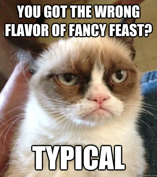 you got the wrong flavor of fancy feast? typical - you got the wrong flavor of fancy feast? typical  Good Day Grumpy Cat