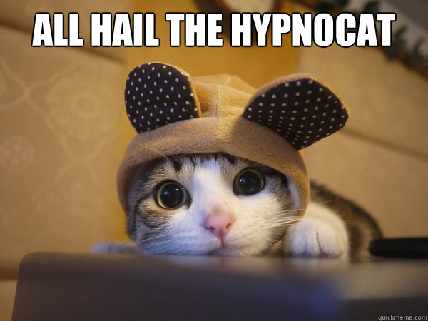 ALL HAIL THE HYPNOCAT - ALL HAIL THE HYPNOCAT  Misc