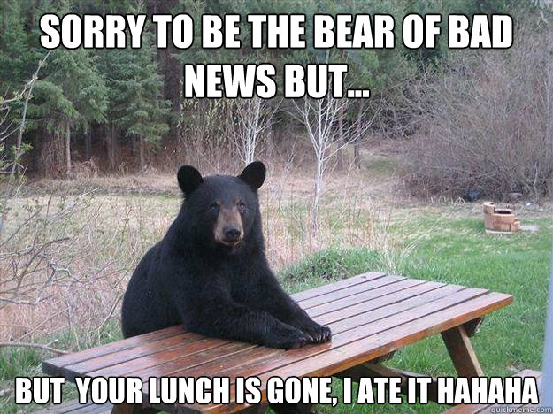 SORRY TO BE THE BEAR of bad news but... But  your lunch is gone, I ate it hahaha - SORRY TO BE THE BEAR of bad news but... But  your lunch is gone, I ate it hahaha  Bear of Bad News