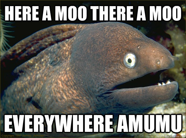 here a moo there a moo everywhere amumu - here a moo there a moo everywhere amumu  Bad Joke Eel