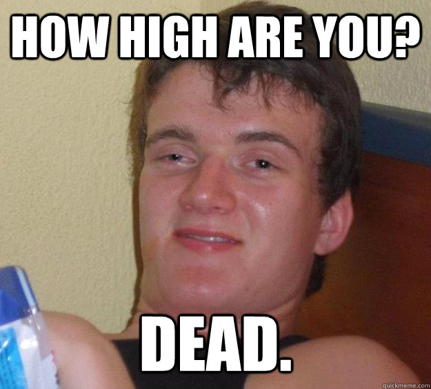 How high are you? Dead. - How high are you? Dead.  10 Guy