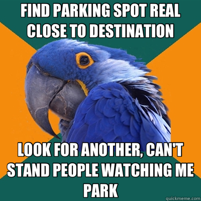 FIND PARKING SPOT REAL CLOSE TO DESTINATION LOOK FOR ANOTHER, CAN'T STAND PEOPLE WATCHING ME PARK - FIND PARKING SPOT REAL CLOSE TO DESTINATION LOOK FOR ANOTHER, CAN'T STAND PEOPLE WATCHING ME PARK  Paranoid Parrot