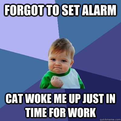 Forgot to set Alarm Cat woke me up just in time for work  Success Kid
