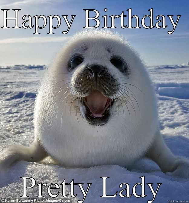 HAPPY BIRTHDAY  PRETTY LADY Easily Pleased Seal