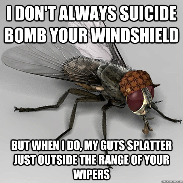 I don't always suicide bomb your windshield but when I do, my guts splatter just outside the range of your wipers - I don't always suicide bomb your windshield but when I do, my guts splatter just outside the range of your wipers  Scumbag Fly