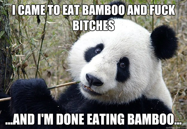 I came to eat bamboo and fuck bitches ...And I'm done eating bamboo...