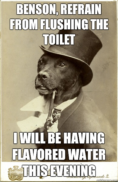 Benson, refrain from flushing the toilet I will be having flavored water this evening  Old Money Dog