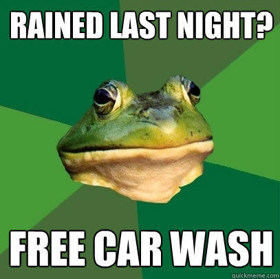 rained last night? free car wash - rained last night? free car wash  Foul Bachelor Frog