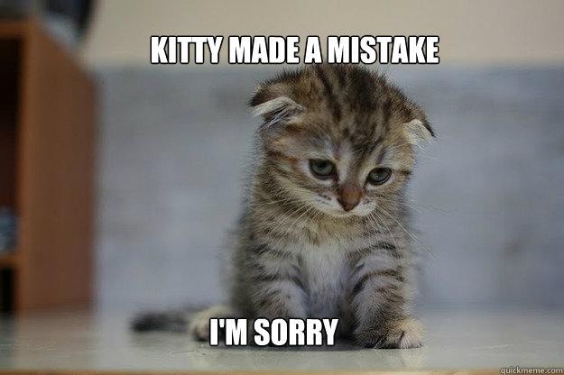 Kitty made a mistake I'm sorry - Sad Kitten - quickmeme
