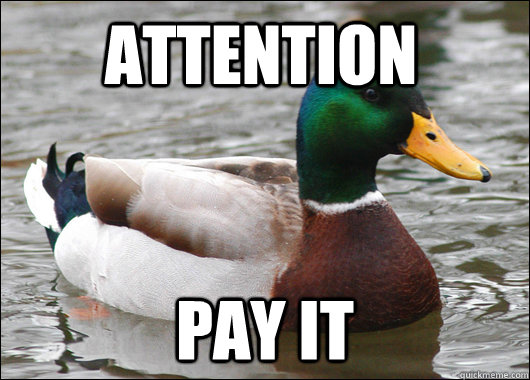 Attention Pay it - Attention Pay it  Actual Advice Mallard
