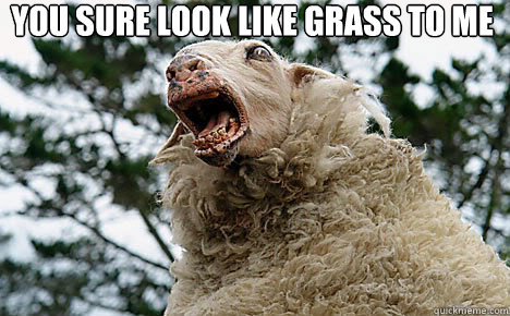 You sure look like grass to me