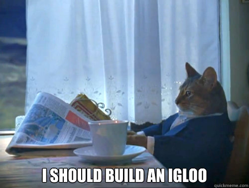 i should build an igloo -  i should build an igloo  The One Percent Cat