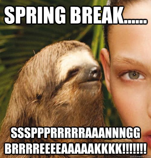 spring break...... sssppprrrrraaannngg brrrreeeeaaaaakkkk!!!!!!!  - spring break...... sssppprrrrraaannngg brrrreeeeaaaaakkkk!!!!!!!   Whispering Sloth
