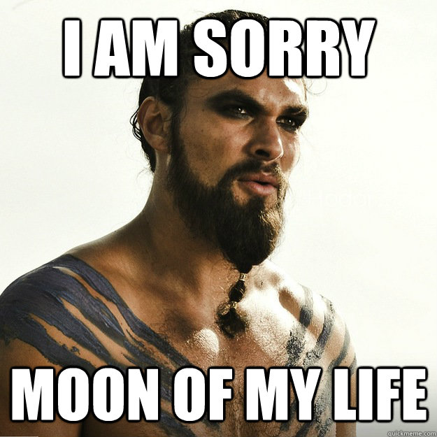 i am sorry  moon of my life