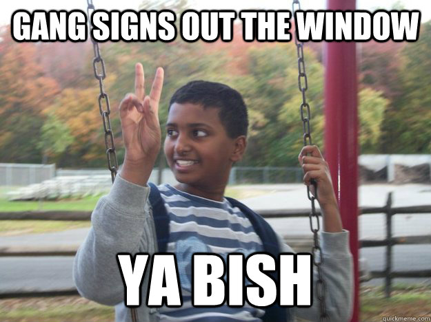 gang signs out the window ya bish - gang signs out the window ya bish  Reckless Rohin