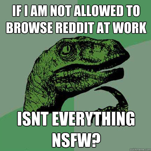 If I am not allowed to browse reddit at work isnt everything nsfw? - If I am not allowed to browse reddit at work isnt everything nsfw?  Philosoraptor