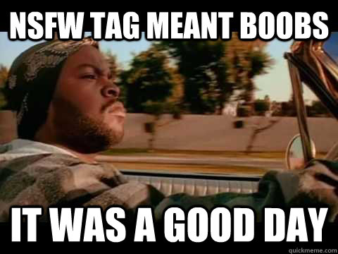 nsfw tag meant boobs it was a good day