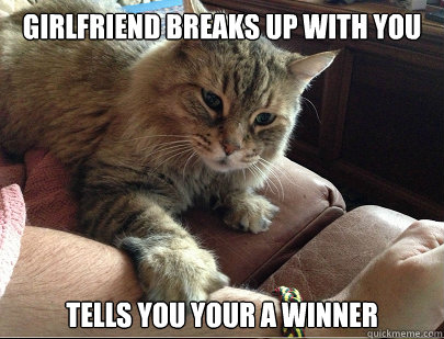 GIRLFRIEND BREAKS UP WITH YOU TELLS YOU YOUR A WINNER - GIRLFRIEND BREAKS UP WITH YOU TELLS YOU YOUR A WINNER  Good Cat Snickers