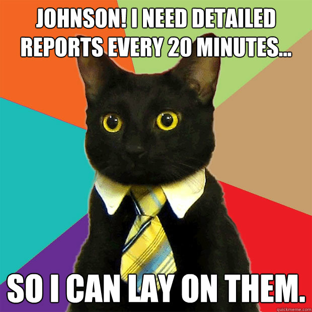 Johnson! I need detailed reports every 20 minutes... so I can lay on them. - Johnson! I need detailed reports every 20 minutes... so I can lay on them.  Business Cat